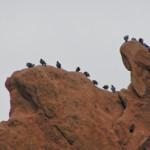 Colorado Springs 10 by TVS