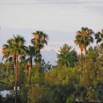 Southern Arizona- Tucson 2 by TVS