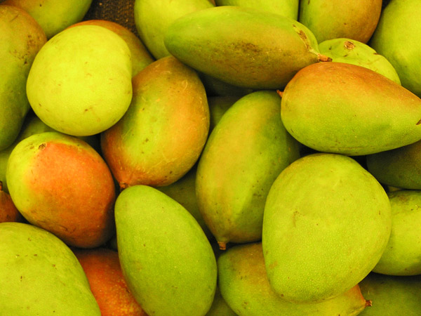 Green Mangos by TVS