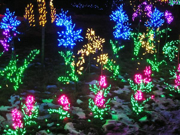 Spring Creek Gardens- Holidays by TVS